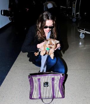 Эмми Россам, фото 3309. Emmy Rossum Looks Great with Her Dog LAX 2/17/12, foto 3309