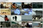 Obie¿y¶wiat / Globe Trekker (2005-2007) PL.TVRip.XviD / Lektor PL