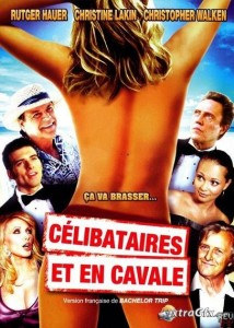 Download Bachelor Trip (2012) DVDRip 350MB Ganool