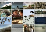 Tajemnice Mekongu / Tales Of The Mekong (2009) PL.TVRip.XviD / Lektor PL