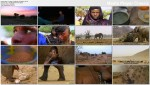 £zy Afryki / Tears in Africa (2010) PLSUB.TVRip.XviD / PLSUB